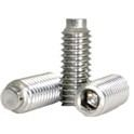 Stainless Steel 18-8 Half Dog Set Screw -