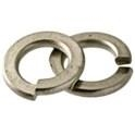 Stainless Steel 316 Split Lock Washer -