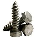 Hex Lag Screws in Steel -