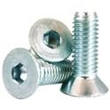 Flat Socket Cap Standard Thread -